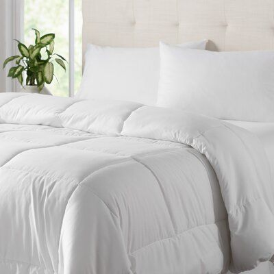 Wayfair Basics™ Wayfair Basics All Season Down Alternative Comforter | Wayfair.ca #downcomforter