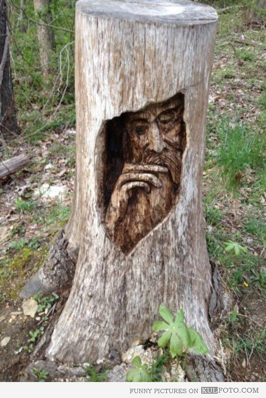 Man in a tree chainsaw carvings wood art pinterest