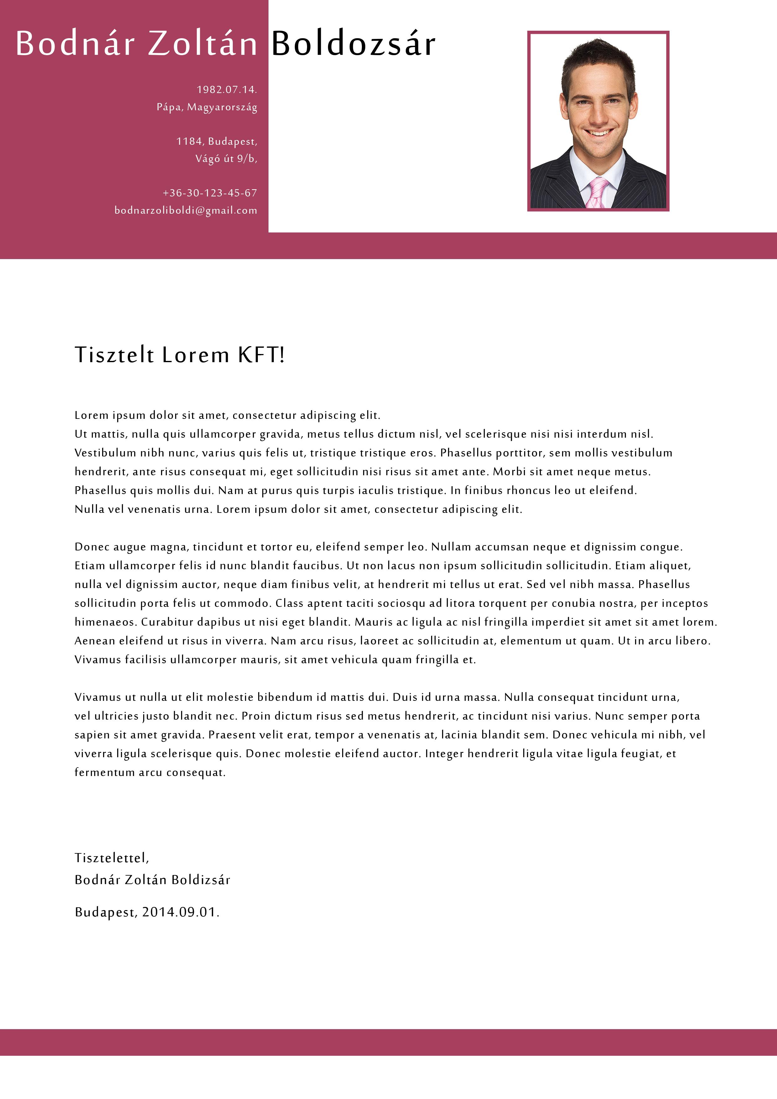 p1 design motivation letter