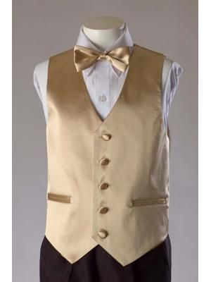 61a283944a9a Boys Champagne 2 Piece Satin Vest Set For the baby boys. | Champagne ...
