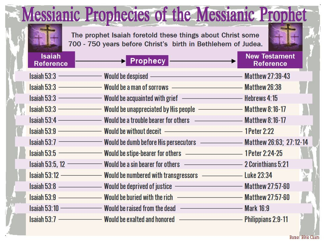 Messianic Prophecies Of The Study Notebook Tools Judaism