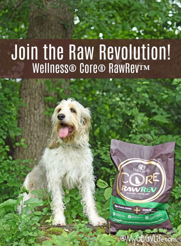 To The Raw Revolution Feed Dogs The Diet they