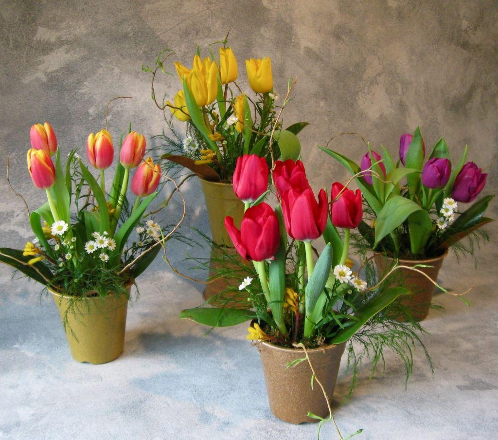 Spring Flowers For Wedding Centerpieces: Spring Tulip Centerpieces