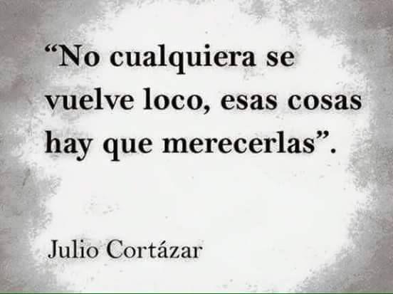 Elogio A La Locura Frases De Locura Julio Cortázar Y