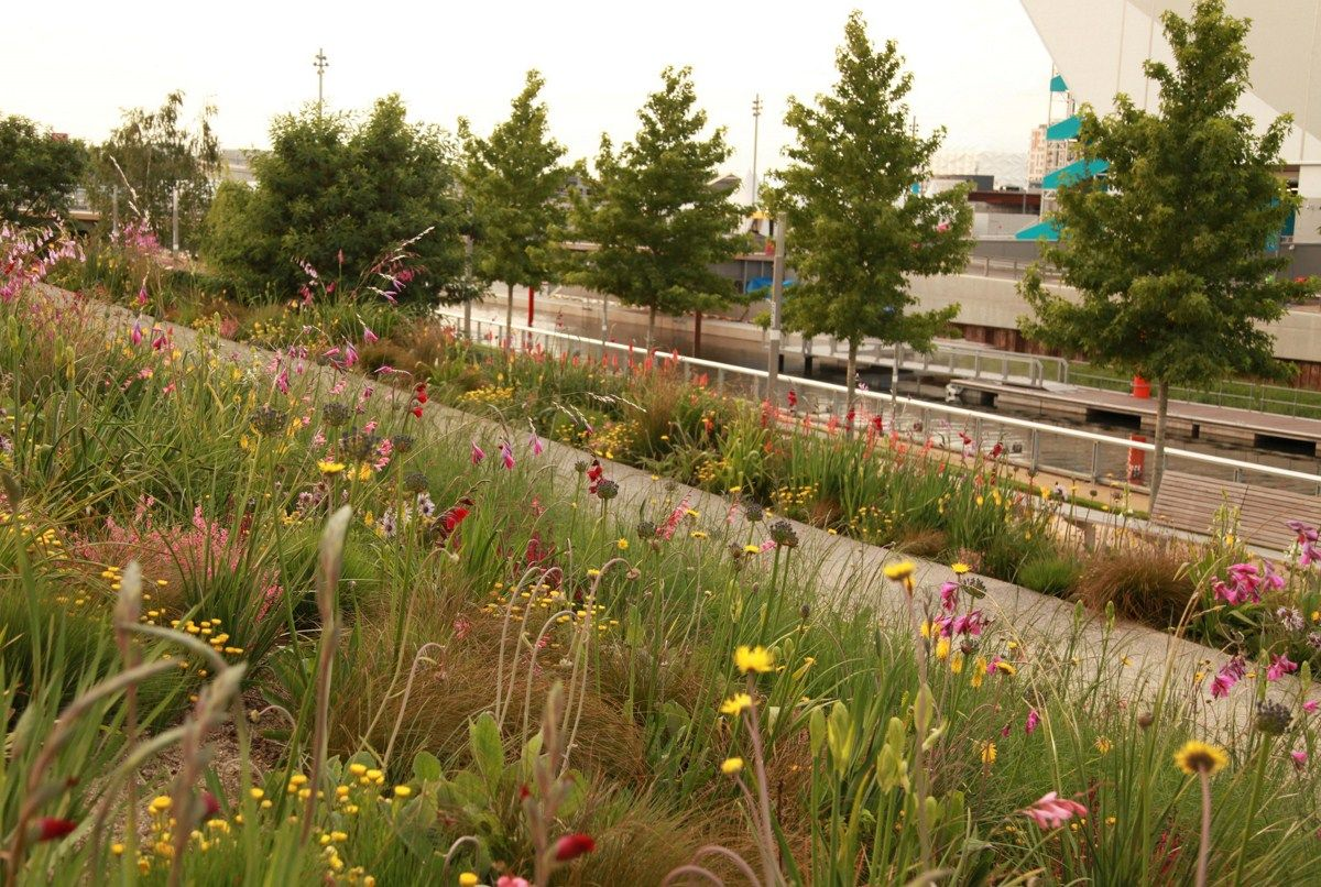Olympic Gardens Southern Hemisphere - Sarah Price Landscapes ...