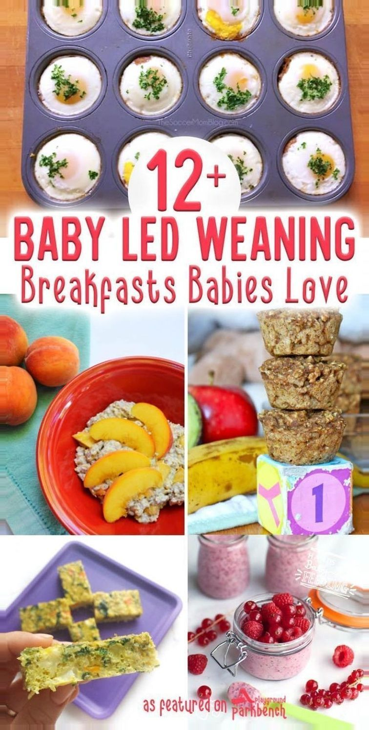 a30827813d73bb99125982fb62270b4f - Baby Led Weaning Rezepte