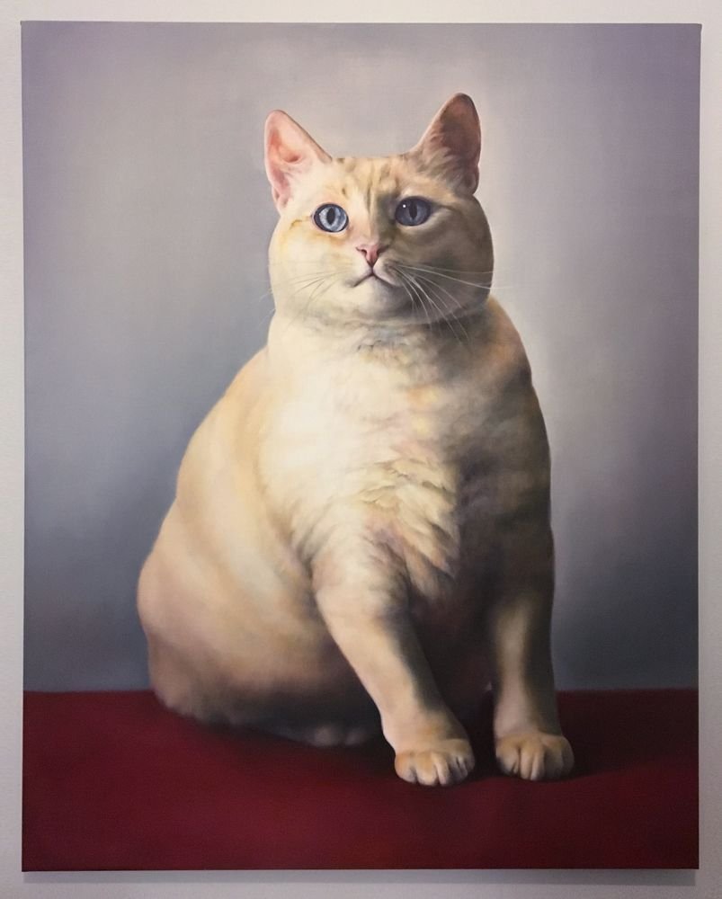 Cat In Bread Box Kate Crosgrove 4'x5' Oil Painting Of My Obese Cat #breadbox