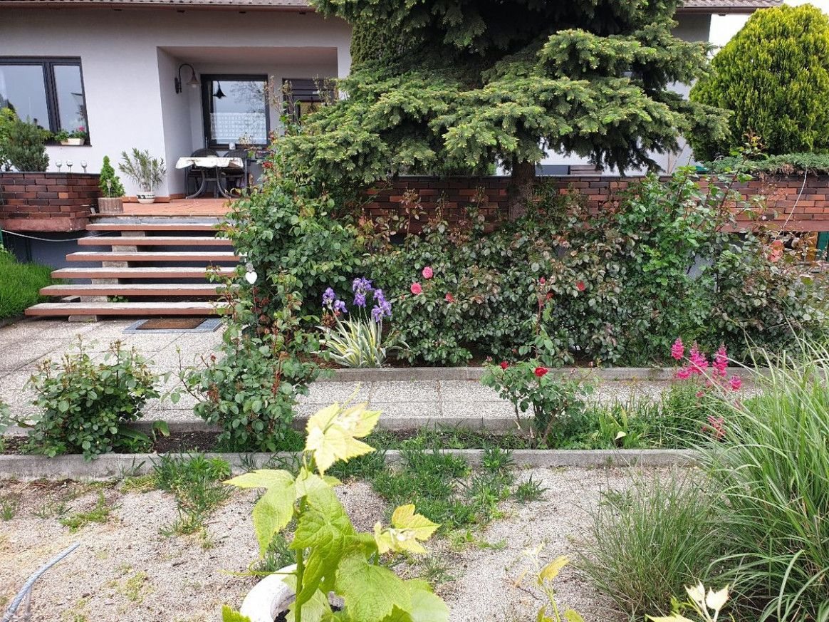 Garten Vermieten Haus Und Garten Wohnung Mit Garten Garten