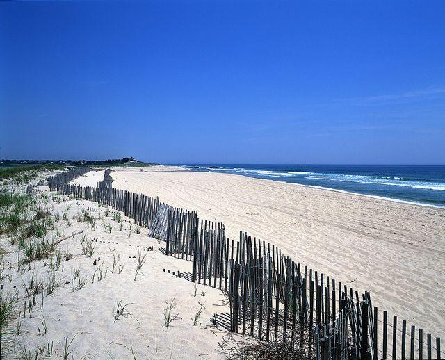 Pristine Ocean Beach In The Hamptons