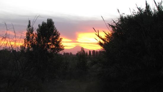 Rancho Viejo Cabalgatas En Mendoza Trip Advisor Places To See