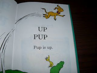 Beginning Reading Help: Teach Basic Phonics Rules with Hop on Pop