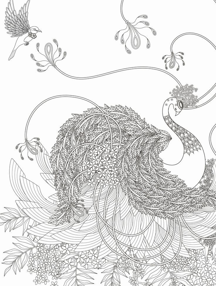 Neue Malvorlage Blumen Gratis Coloring Ae Photo De Blumen Coloringaephotode Gratis Malvorlage N Malvorlage Einhorn Vogel Malvorlagen Malvorlage Eule