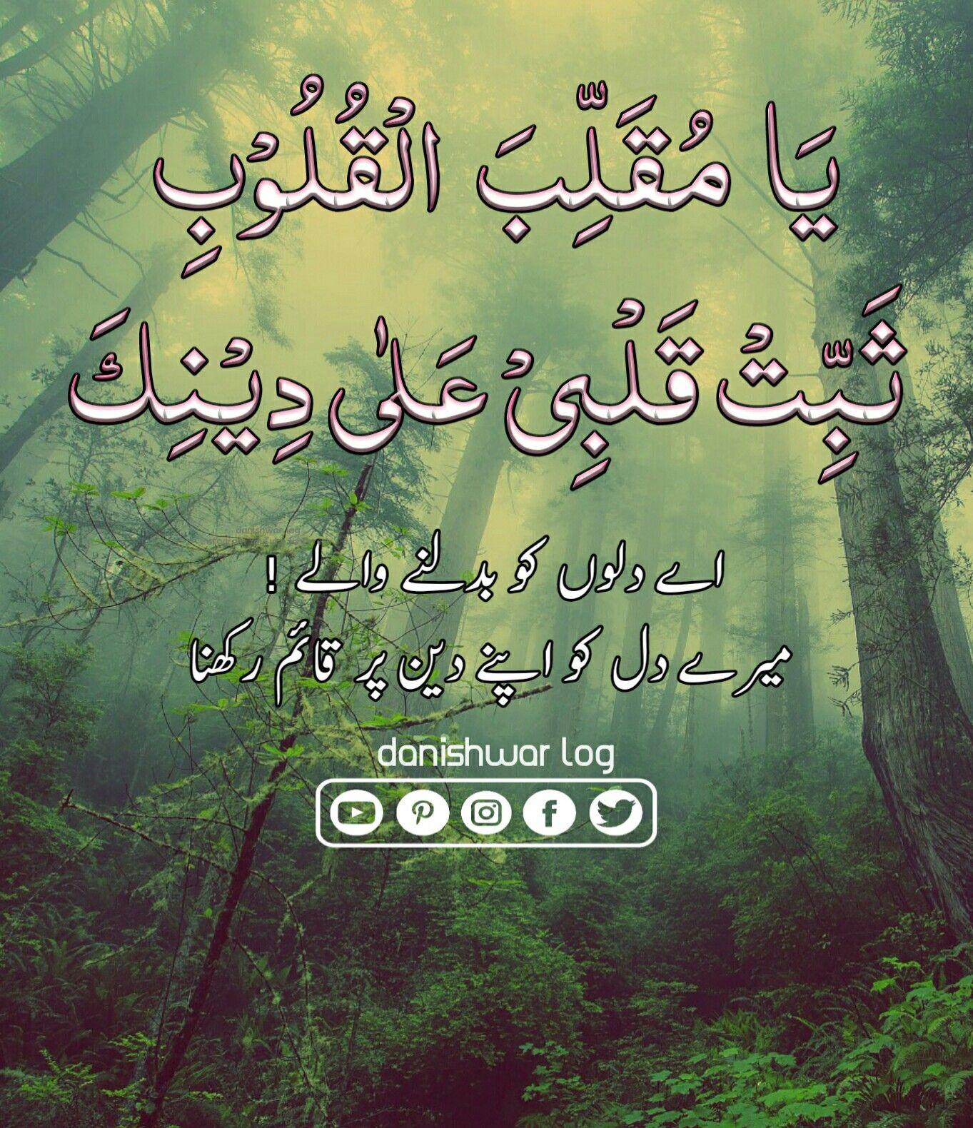 quotas #quran # | Quran e Hades قران و حدیث | Quran quotes