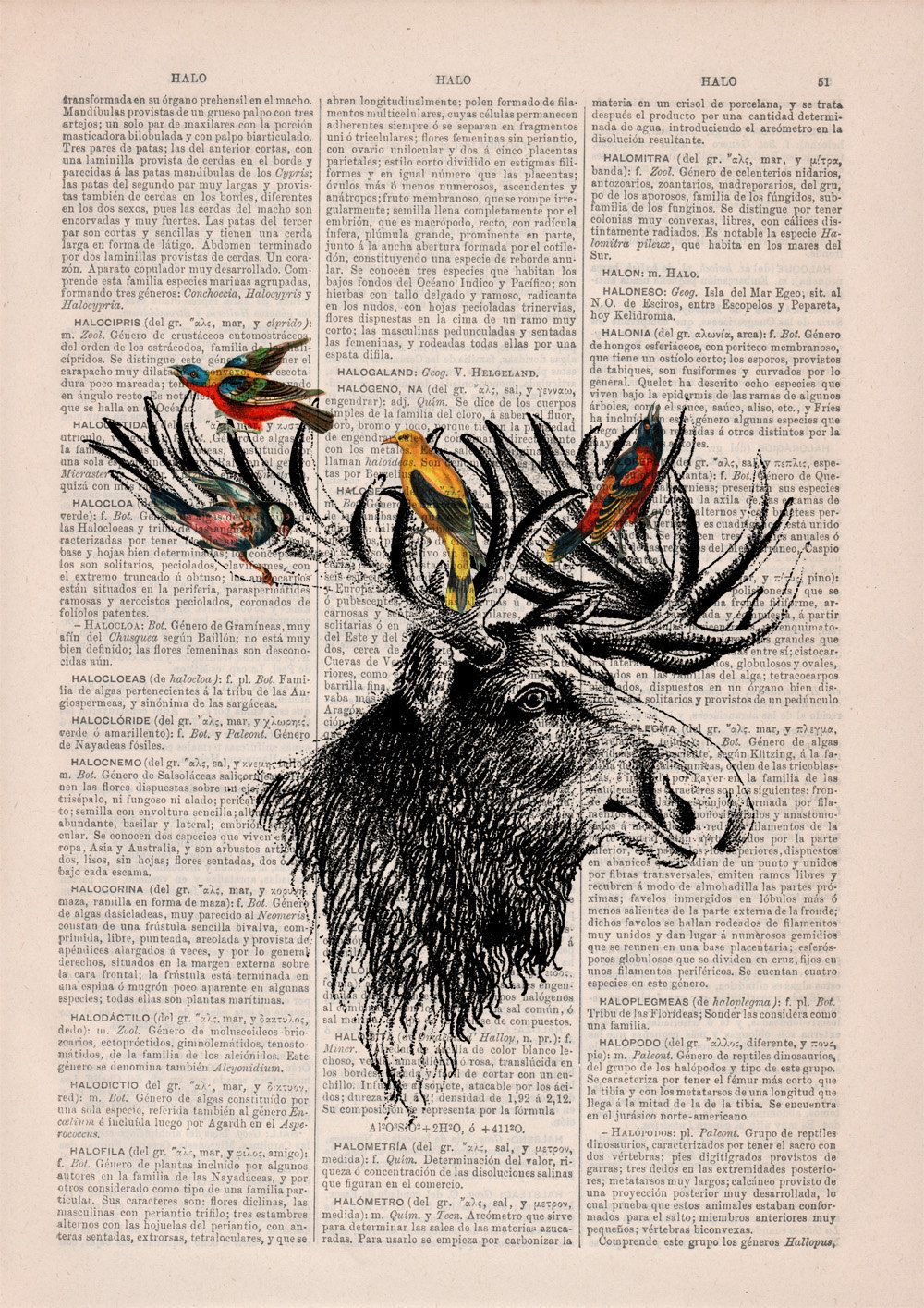 Something like this, with goldfinches and bluejays in the antlers would be gorgeous as a memorial tattoo for my poppy<3   Moose head and birds collage on Upcycled Book page