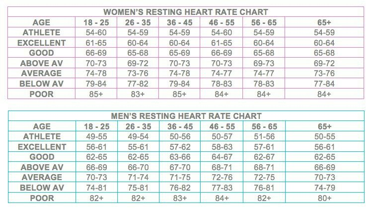 Resting Heart Rate Health Pinterest Heart Rate And Exercises