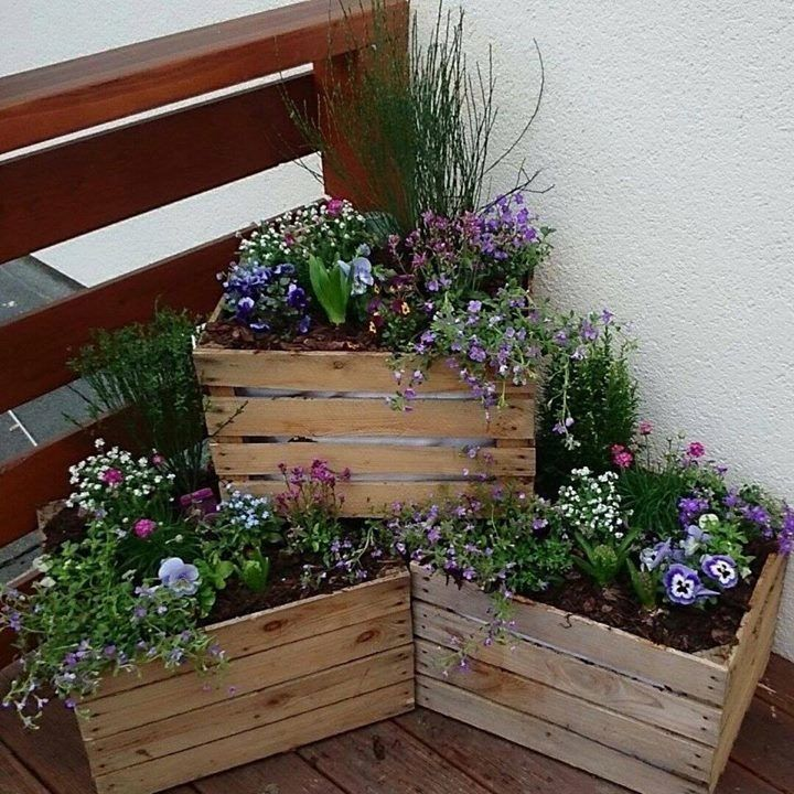 Photo of Crates in the Garden for a Rustic Look. #Crates #Fence backyard #Fence design #F…