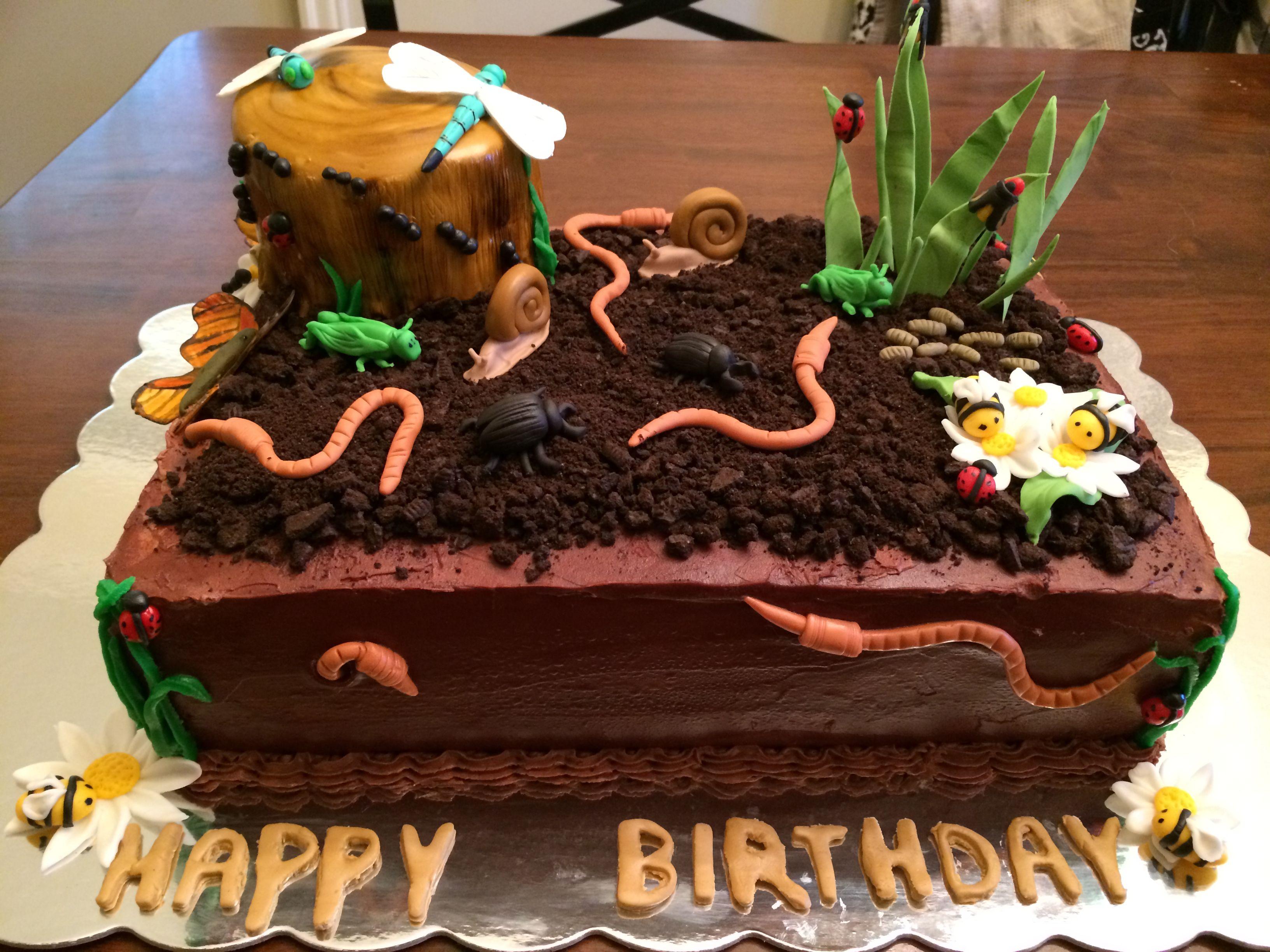 Peachy Insect Cake Bug Birthday Cakes Birthday Cake Kids Boy Birthday Funny Birthday Cards Online Overcheapnameinfo
