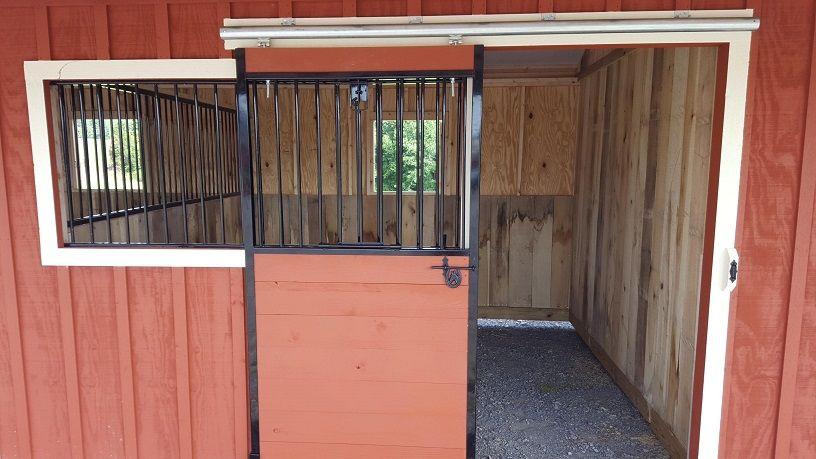 mini horse rental near me