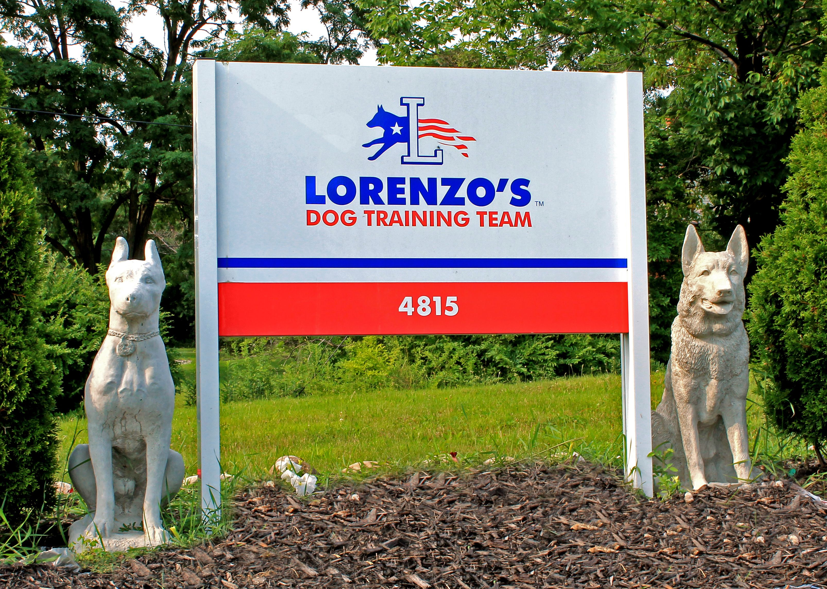 Lorenzo S Dog Training Team Training Center Located In Garfield