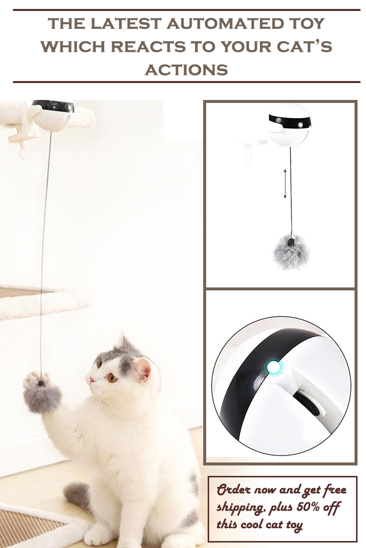 Automated Cat Toy In 2020 Cat Toys Toys Kitty