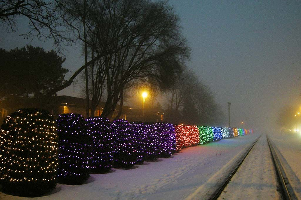 University Avenue Tree Lights Are >> Lights Along University Ave By The Hospital Madison Wisconsin