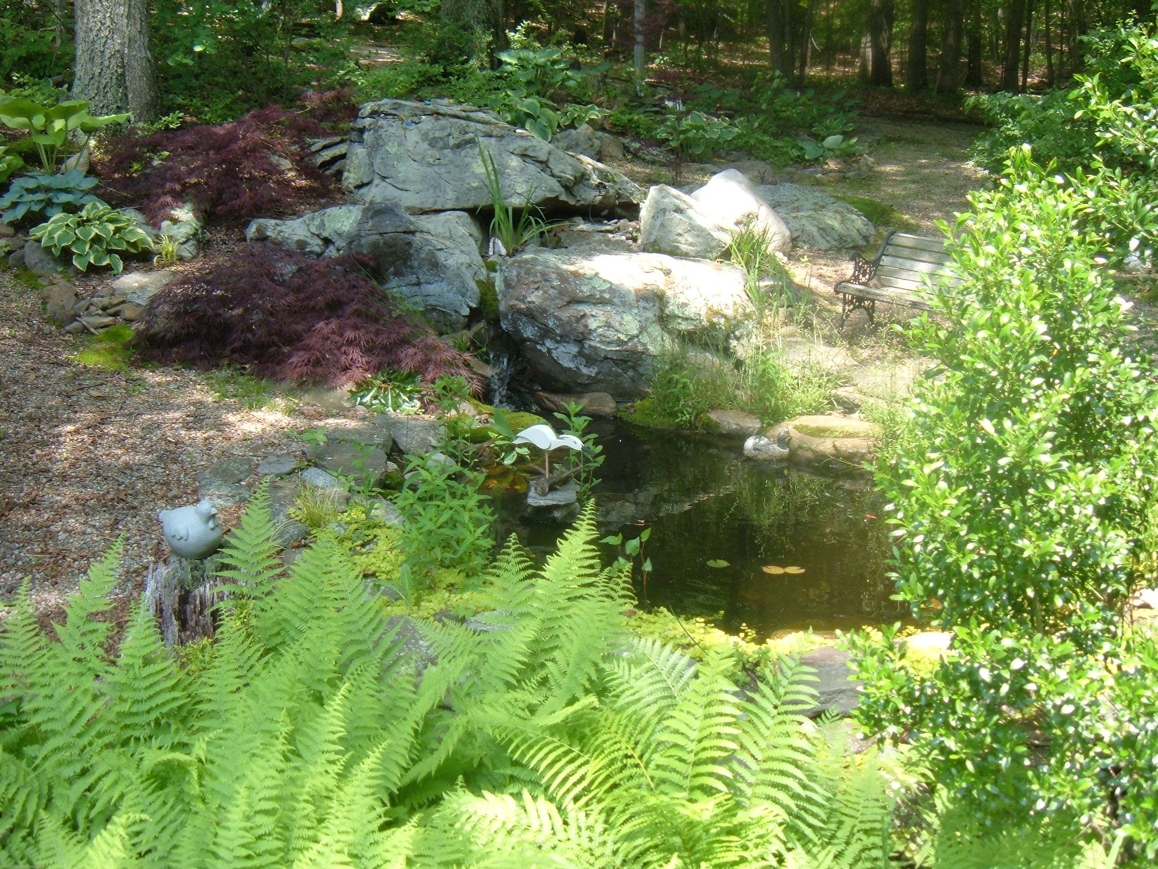 Building a Small Backyard Pond Around Rocks and Under