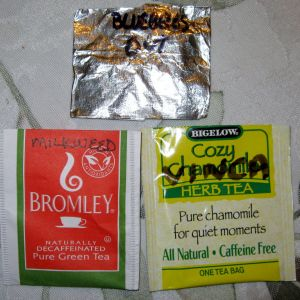 Seeds stored in tea bags