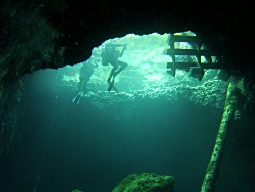 Paradise Springs Florida | Scuba in 2019 | Diving lessons