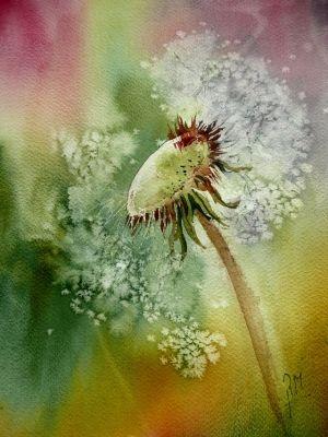 Rose Marie Dubreucq Watercolor Peinture Fleurs Aquarelle Fleurs