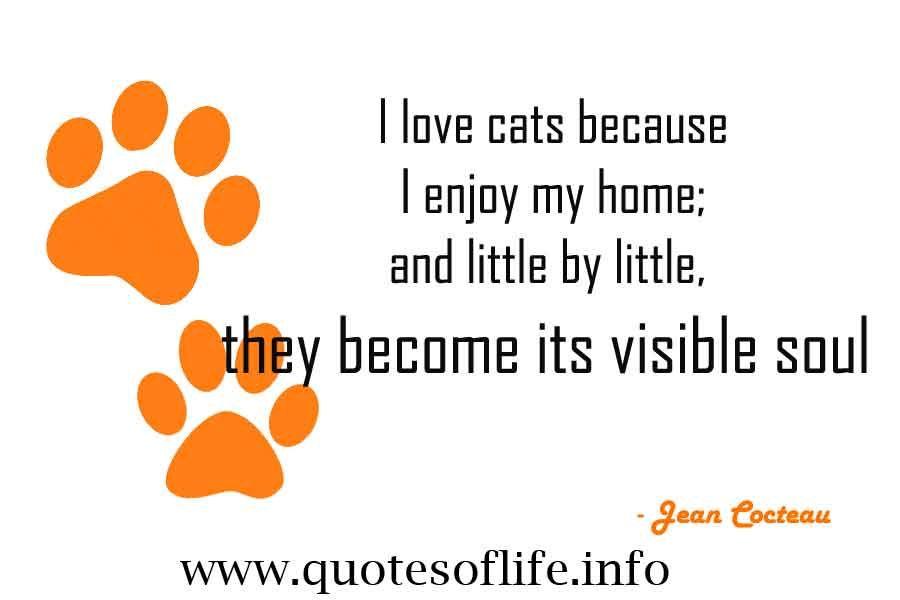 Jean Cocteau Cat Quotes. QuotesGram