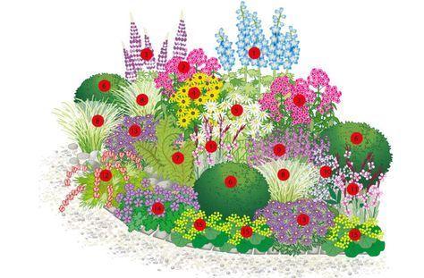 Das 4 jahreszeiten staudenbeet garten pinterest for Garten 4 jahreszeiten