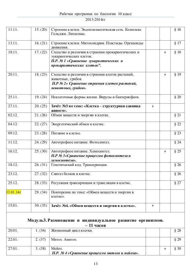 Спиши.ру 10 класс история