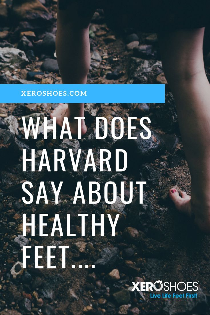 The Harvard Health Guide to Healthy Living has lots of great info, but my favorite is the section, K...