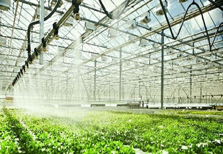 Global Smart Greenhouse Irrigation System Market Research Report 2019 - 24  Market Reports