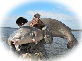 Photo of Catfishing the James river #taliparecipes