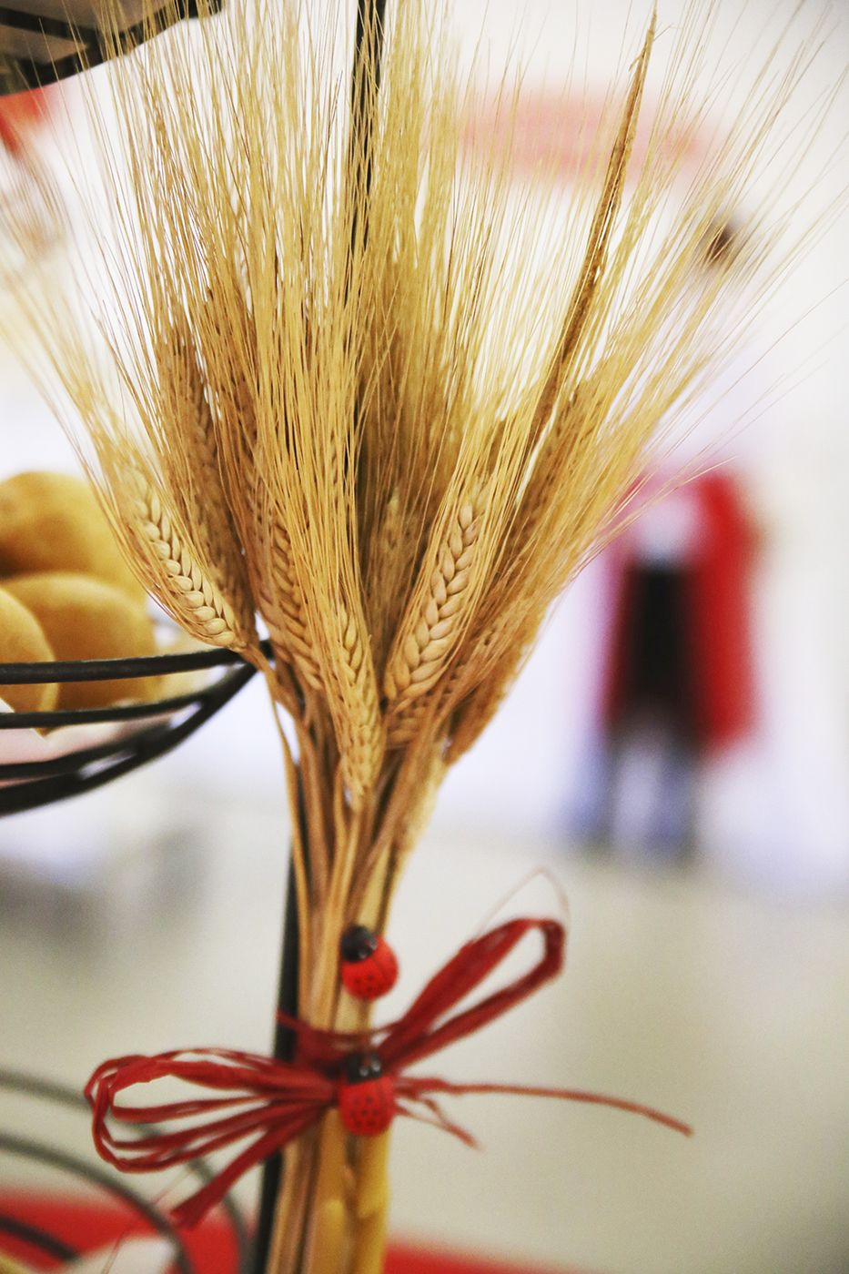 Wheat. #food #pasta #italy #photo