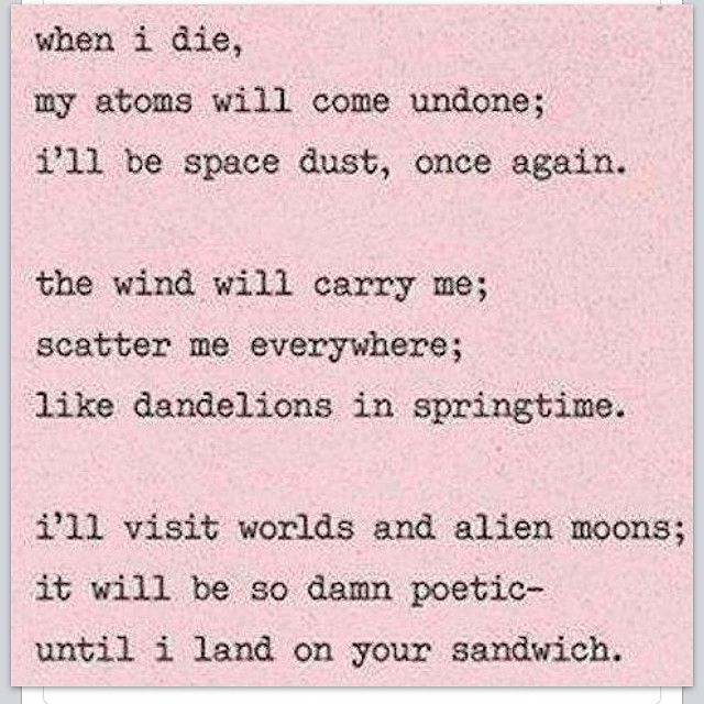 It Will Be So Damned Poetic Until I Land On Your Sandwich When