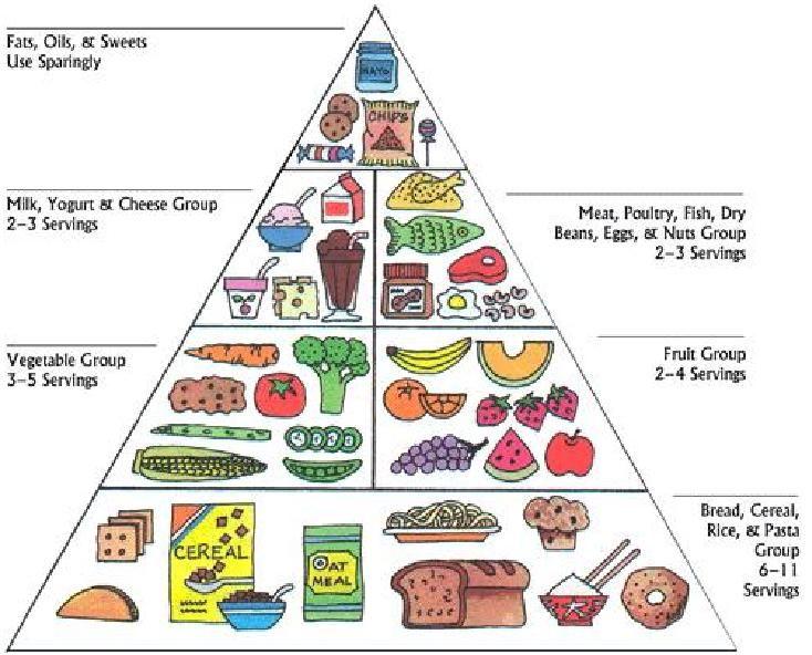 Préférence Image result for food pyramid for kidney transplant 2016 | Kidney  EC26