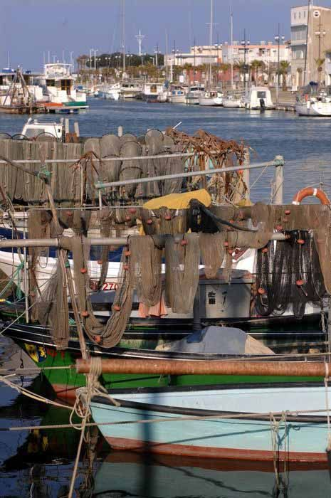 Port Espiguette Toutes Les Cartes