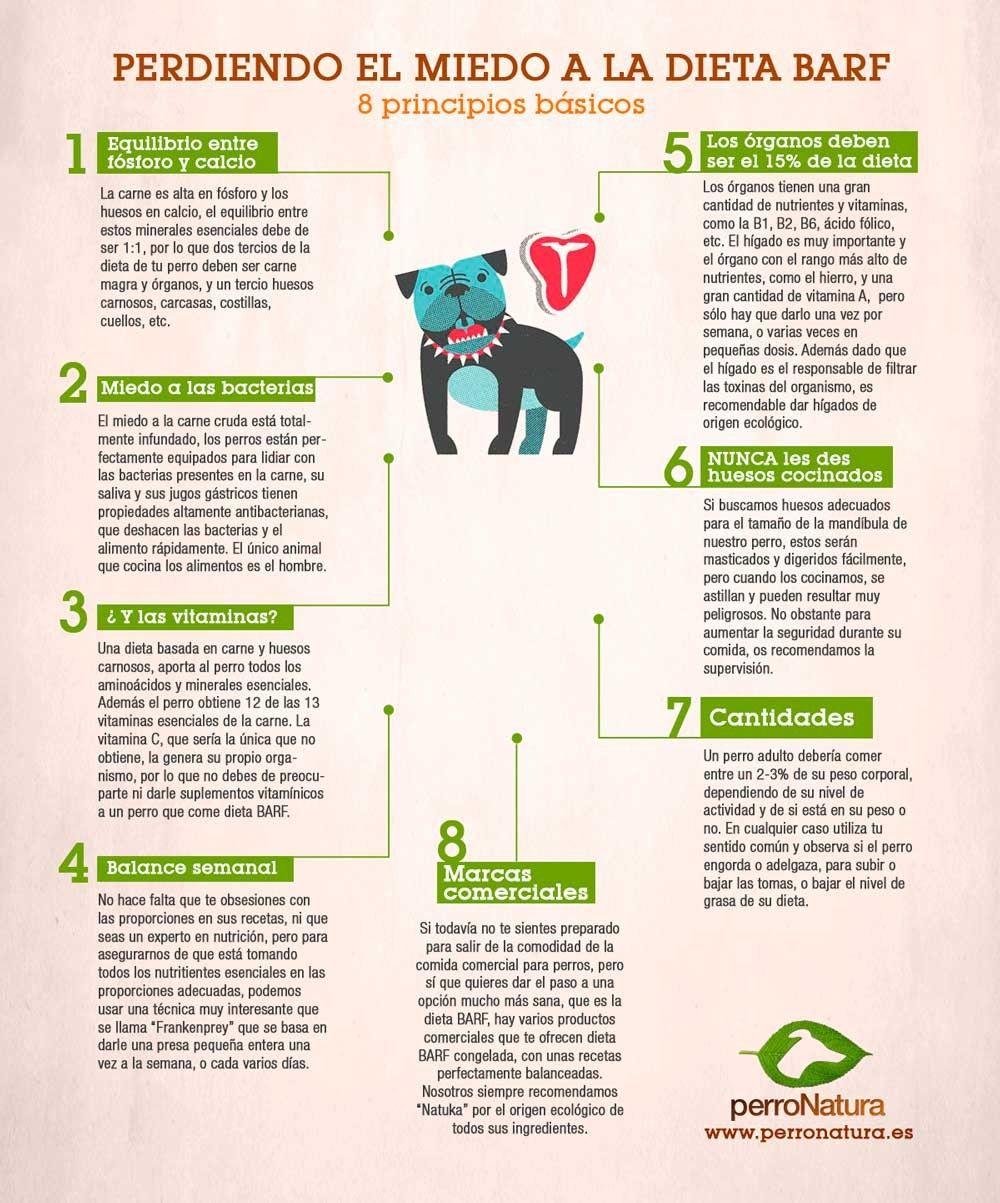 Perdiendo El Miedo A La Dieta Barf Dieta Barf Perros Recetas De Comida Para Perros Alimentacion Perros