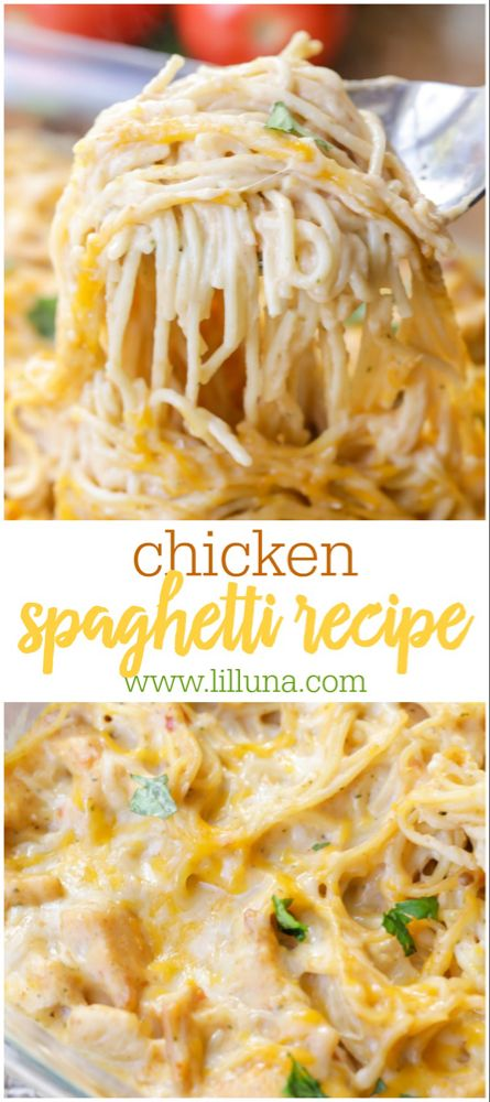 A new twist on your favorite pasta dinner! This easy recipe calls for chicken, spaghetti noodles, cream of chicken, salsa, sour cream and cheese, making it the epitome of comfort food. #chickenspaghetti #spaghetti #chicken #chickendinner #chickenrecipes #dinner #dinnerrecipes