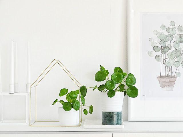 Unsere Zeit ist jetzt Interiors - Pflanzen Deko Wohnzimmer