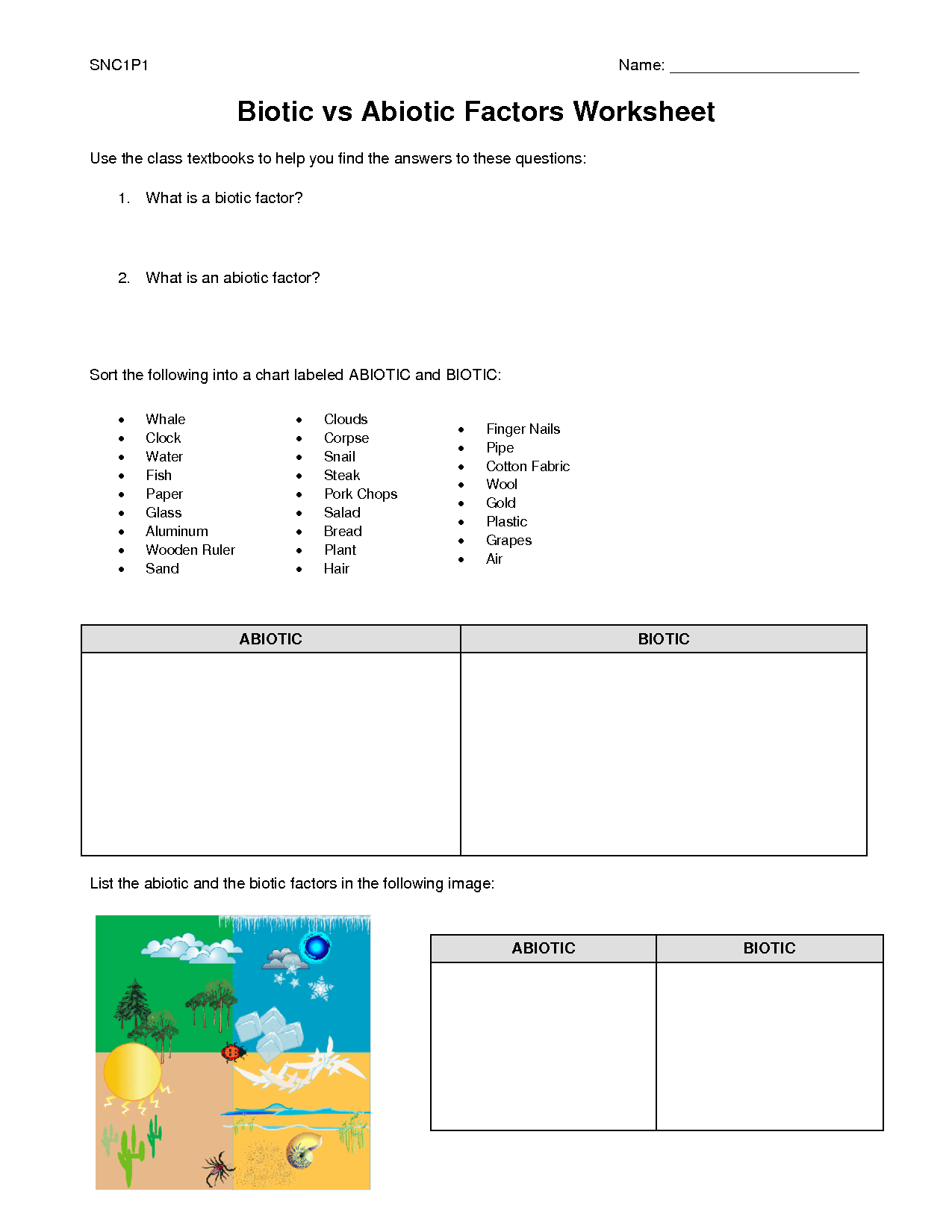 Biotic And Abiotic Factors Worksheet