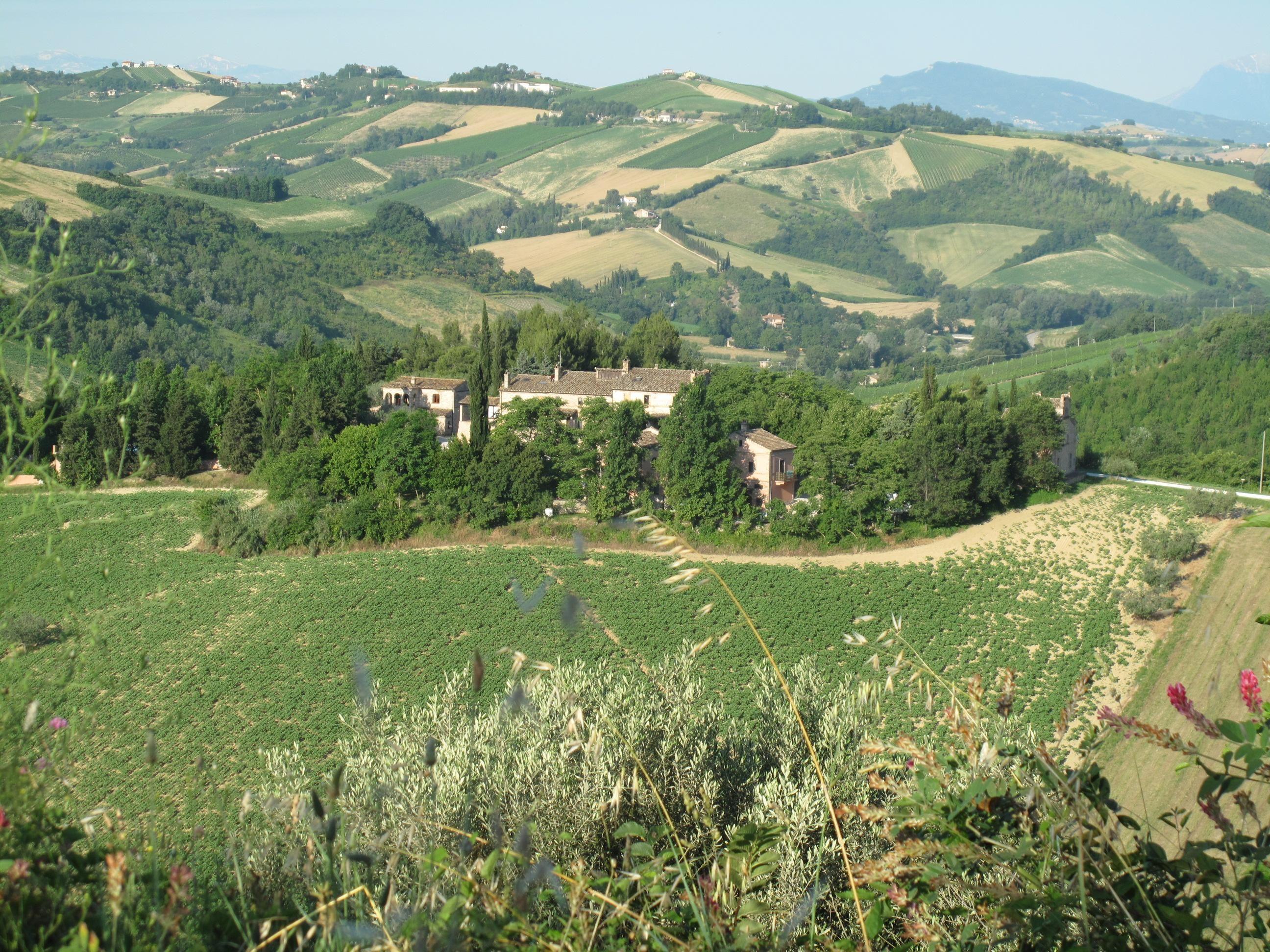 Agriturismo La Campana B&B (Montefiore dell'Aso, Marche