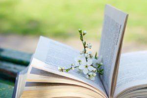 Gartenbücher: Die 10 besten Buchtipps für Gartenfreunde - Plantura #pflegeleichtepflanzen