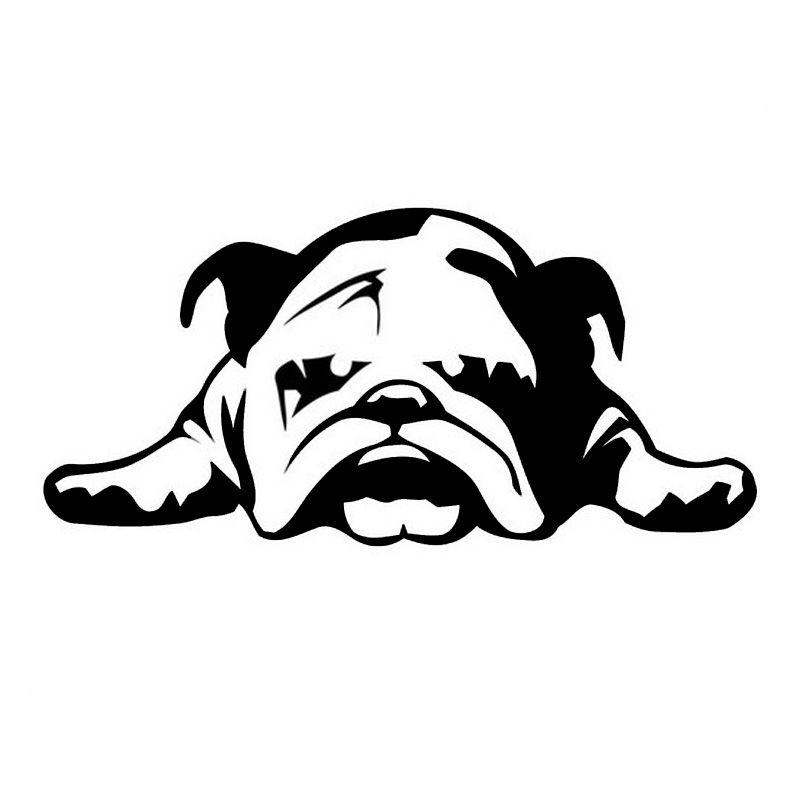 11 23 Cm Car Stickers English Bulldog Tired Puppy Dog Cartoon