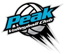 Volleyball Logo Google Search Sports Theme Volleyball Sports Logo