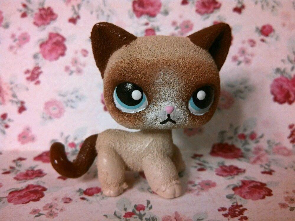 Grumpy Short Hair Cat Ooak Hand Painted Repaint Custom Littlest