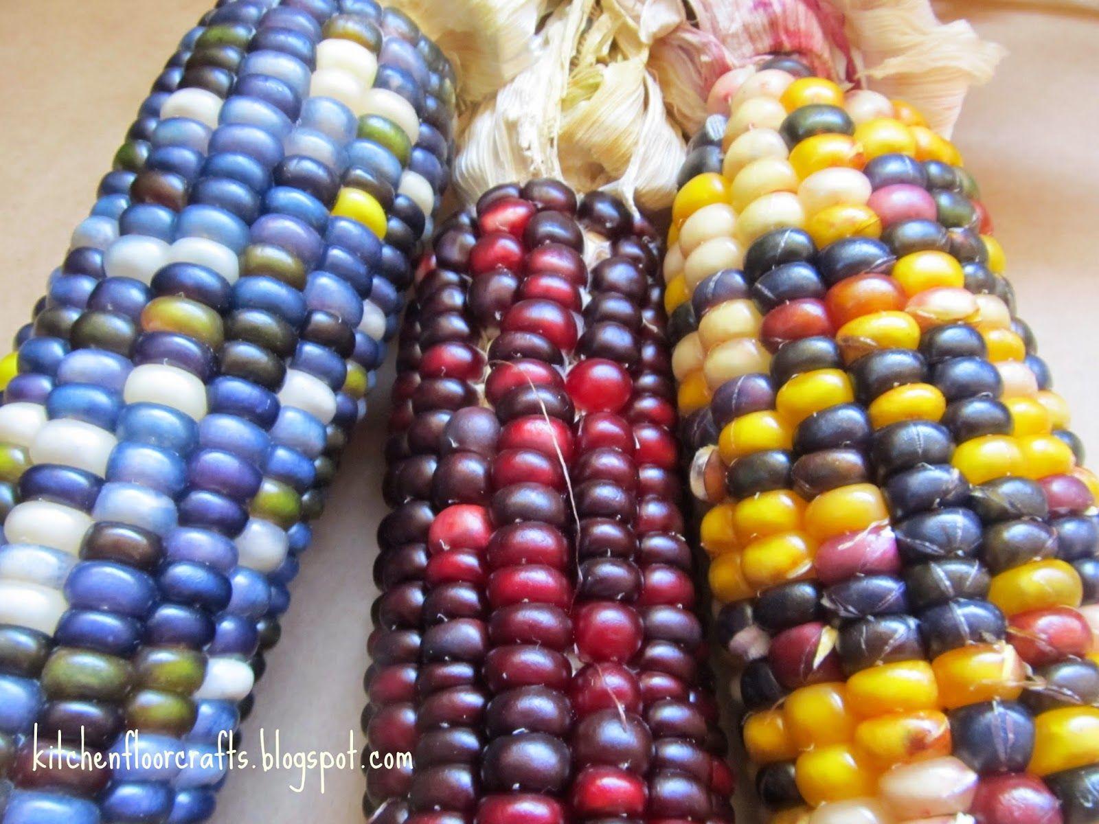 Kitchen Floor Crafts Indian Corn Sensory Play Indian