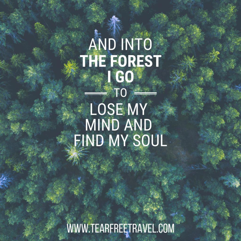 Best travel quotes: 75+ adventure quotes to inspire exploration - Tear Free Travel -   - #Adventure #exploration #FREE #Inspire #quotes #Tear #Travel #TravelQuotes